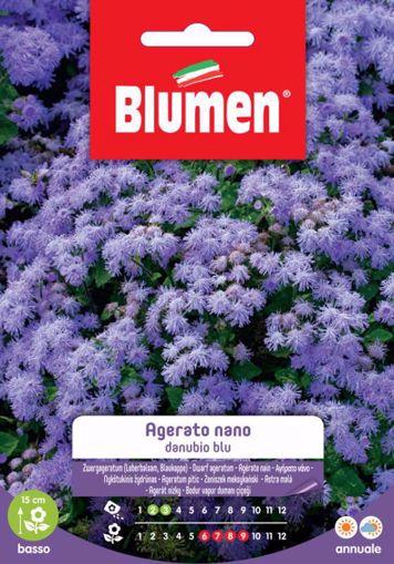 Immagine di Confezione Semi di Agerato Nano Danubio Blu Blumen esterno aiuola vaso giardino