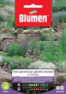Picture of Confezione semi misti perenni per giardini rocciosi Blumen pianta decorazione