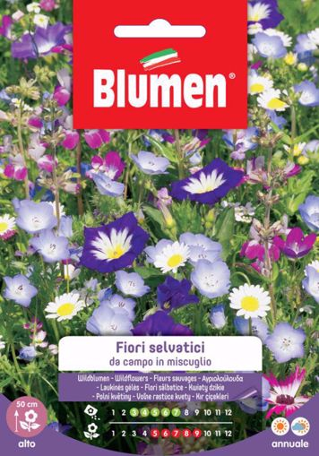 Immagine di Confezione semi selvatici da campo misti Blumen pianta giardino decorazione