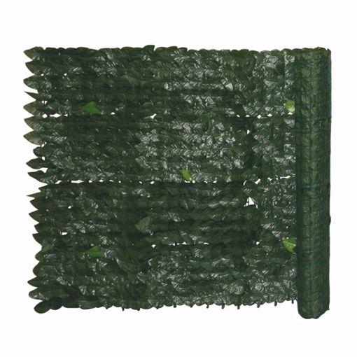 Immagine di Siepe evergreen edera 1,5x3 mt