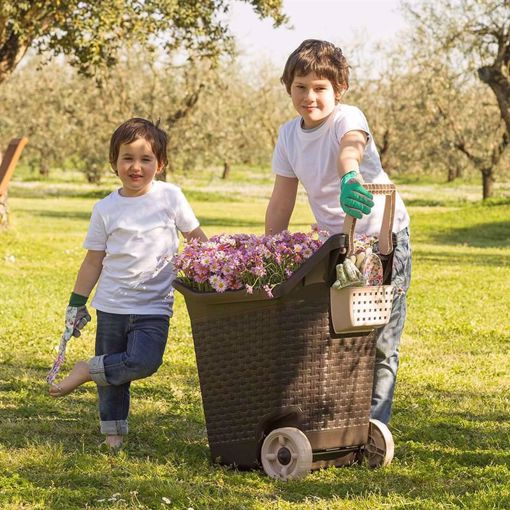 Picture of Kart Carriola Trolley lt. 76 colore: Cacao